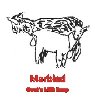 marbled goats milk soap